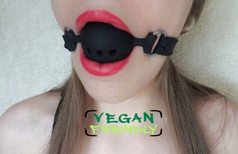 Vegan Friendly  PVC/Silicone 3 Hole Breathable Ball Gag